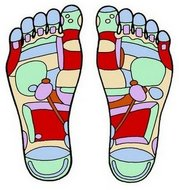 Butler Podiatrist | Butler Conditions | PA | Michaele A. Crawford, DPM, LLC |